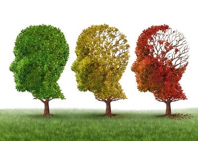 SORGE Seminar Überblick - 5 statt nur 3 Phasen der leichten, mittelschweren und schweren Demenz.