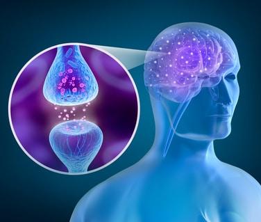 Botenstoffen im synaptischen Spalt
