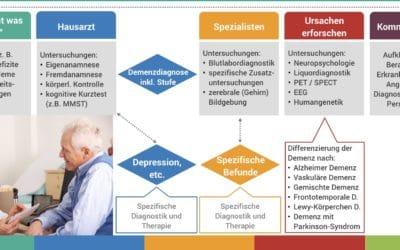 Der Demenz Diagnose Prozess – Schritt für Schritt Infografik zur leichteren Orientierung